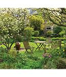 طراحی فضای سبز حیاط خانه، ۷ نکته برای تازه کارها