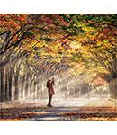 بهترین شهرهای آسیایی برای سفر در پاییز