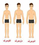 انواع تيپ بدنی و تاثير آن در نوع تمرين و رژيم تغذيه ای