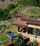 چگونه پشت بامی سبز داشته باشیم